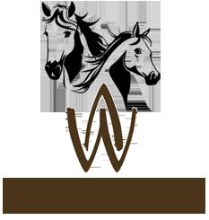 logo_Wasteins_ori